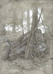 """Ontario Woods"", 9x12 silverpoint on toned paper"