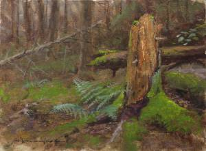 """Forest Floor, Proverbs 27:19"" 8x10 oil on linen"