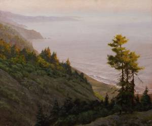 """Santa Lucia Fir at Big Sur"" 16x20 oil on linen"
